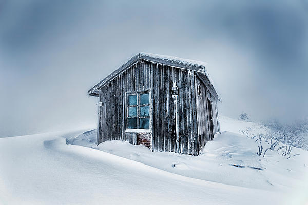Shed In The Blizzard Print by Evgeni Dinev