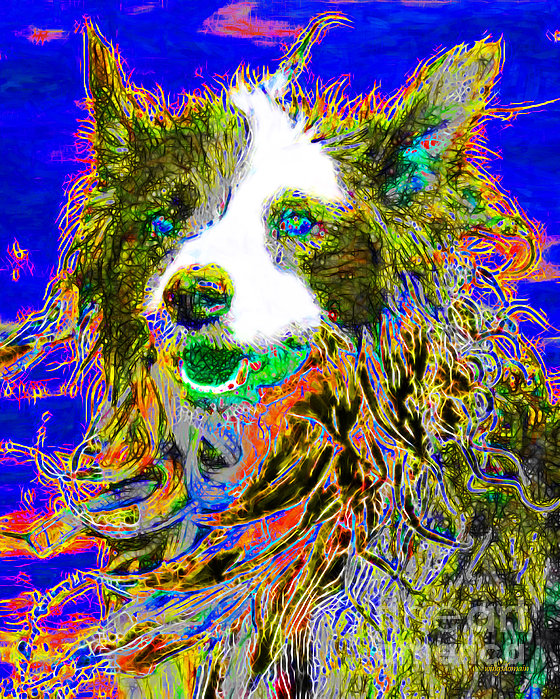 Sheep Dog 20130125v3 Print by Wingsdomain Art and Photography