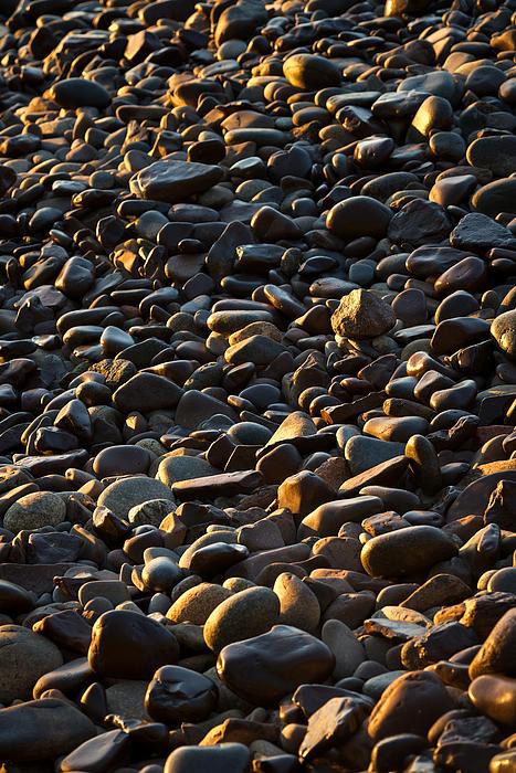 Shore Stones Print by Steve Gadomski