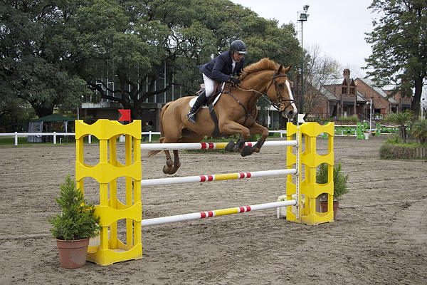 Venetia Featherstone-Witty - Show Jumping in Argentina
