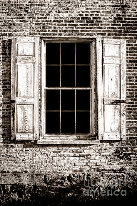 Shutters Print by Olivier Le Queinec