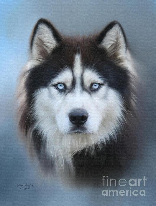 Siberian Husky Print by Lena Auxier