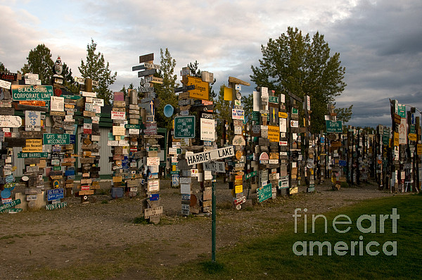 Sign Post Forest Print by Mark Newman