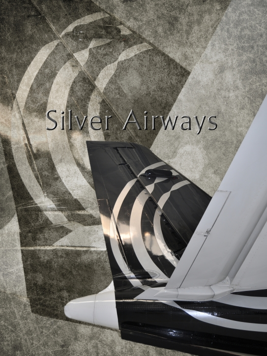 Silver Airways Tail Logo Print by Diane E Berry