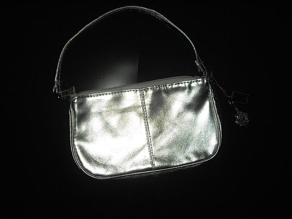 Silver Bag With Rose Locket Print by Robert Cunningham