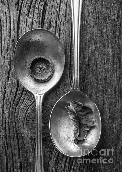Silver Spoons Black And White Print by Edward Fielding
