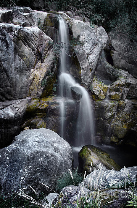 Silver Waterfall Print by Carlos Caetano