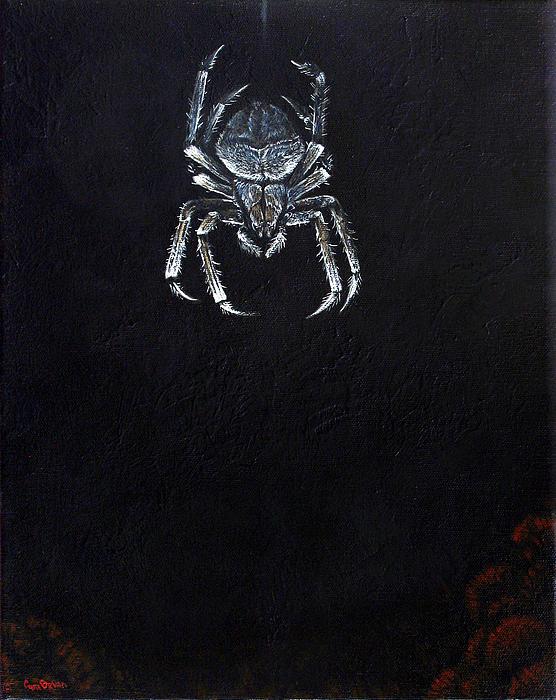 Simply Spider Print by Cara Bevan