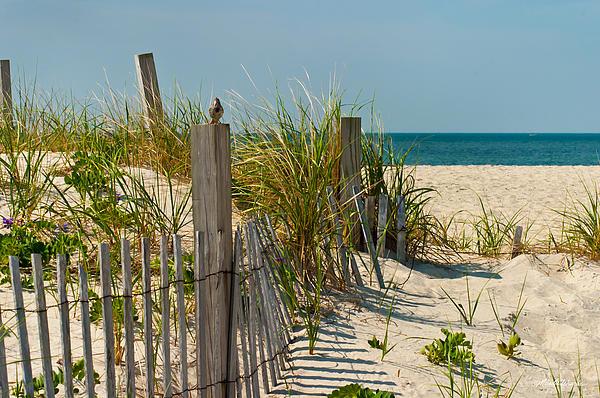 Shore To Shore Title Delray Beach Fl