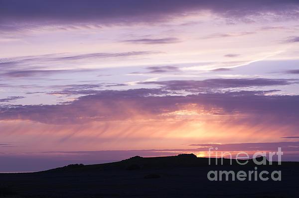 Skomer Sunset Print by Anne Gilbert