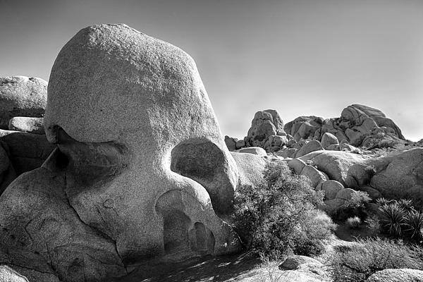 Skull Rock Print by Peter Tellone