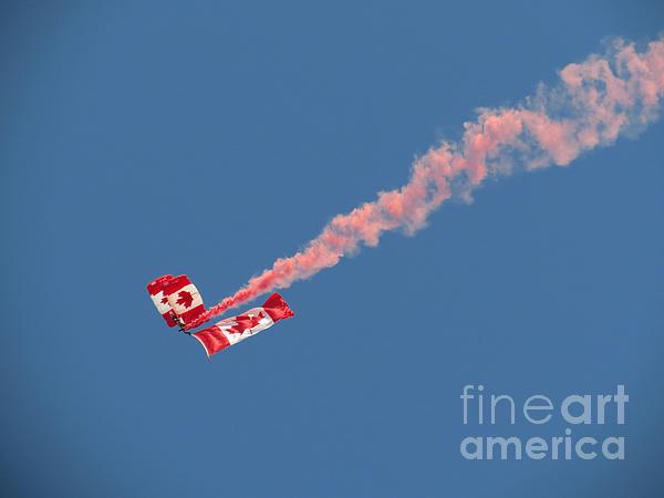 Ausra Paulauskaite - Skydivers #01