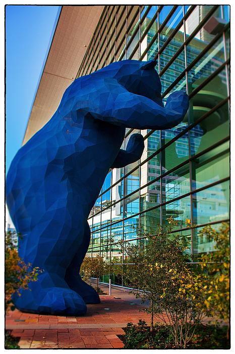 Slightly Blurry Denver Bear Print by For Ninety One Days