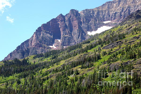 Sloping Mountain At Two Medicine Lake Print by Carol Groenen
