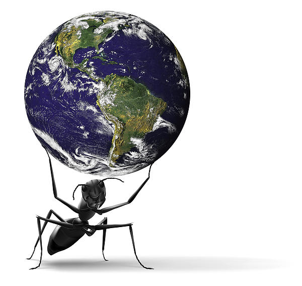 Small Ant Lifting Heavy Blue Earth Print by Dirk Ercken