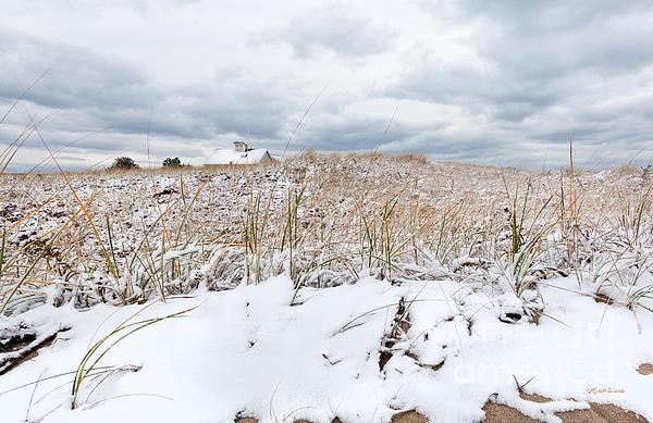 Smuggler's Beach Snow Cape Cod Print by Michelle Wiarda