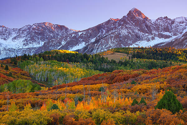 Sneffels Sunrise Print by Darren  White