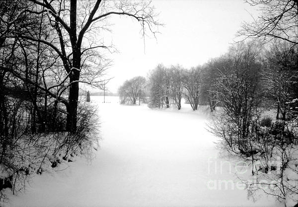 Snow Covered Herrick Lake 1981 Print by ImagesAsArt Photos And Graphics