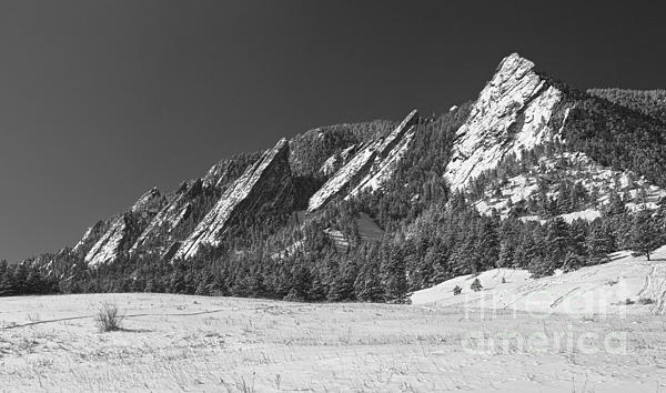 Snow Dusted Flatirons Boulder Co Panorama Bw Print by James BO  Insogna