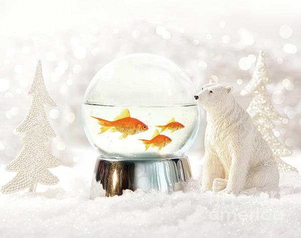 Snow Globe In  Winter Scene Print by Sandra Cunningham