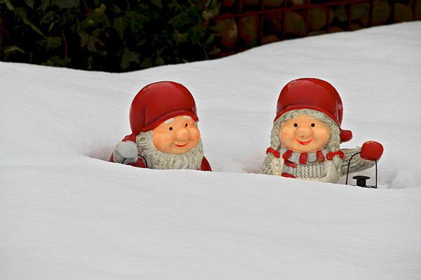 Snow Gnomes Print by Odd Jeppesen