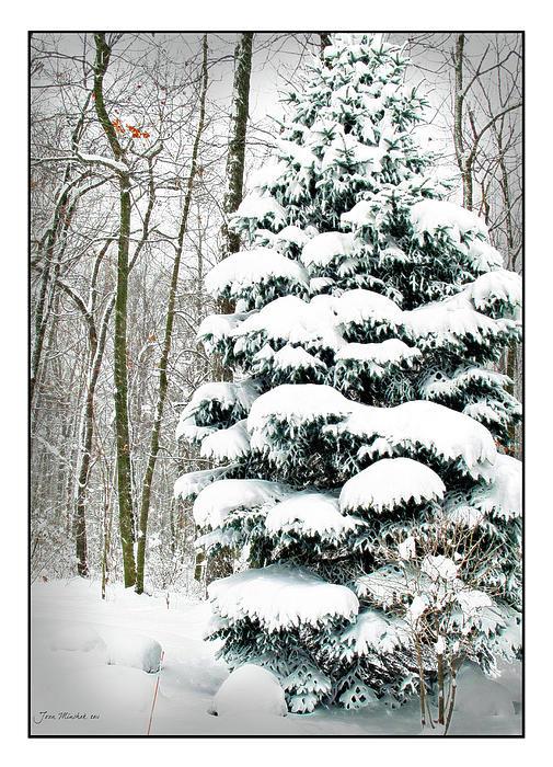 Snow In Ohio Print by Joan  Minchak