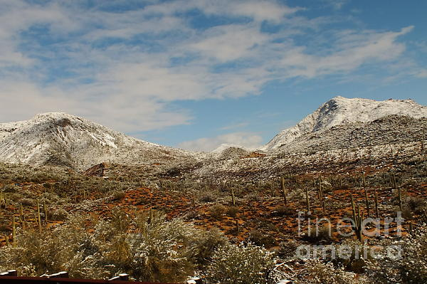 Chandra Nyleen - Snow in the Desert