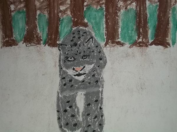 Snow Leopard Pastel On Paper Print by William Sahir House