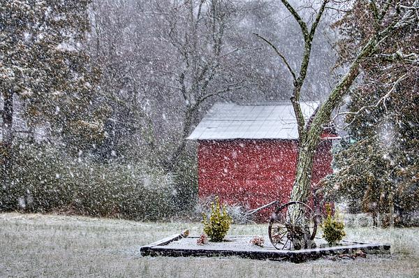 Snow On The Shed Print by Benanne Stiens