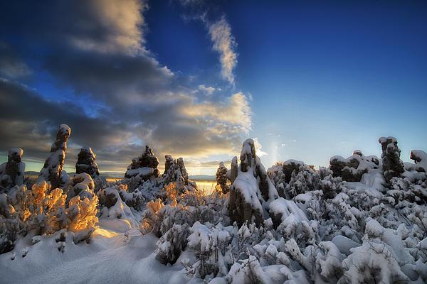 Snow On Tufa At Mono Lake Print by Peter Dang