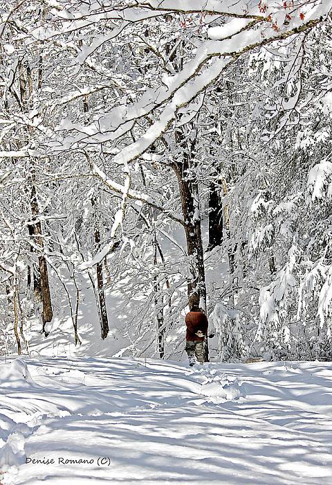 Snow Walking Print by Denise Romano
