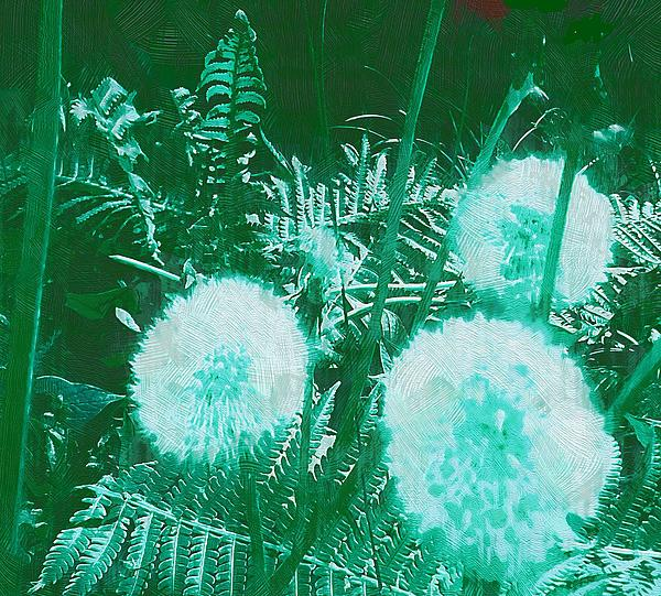 Snowballs In The Garden Print by Pepita Selles
