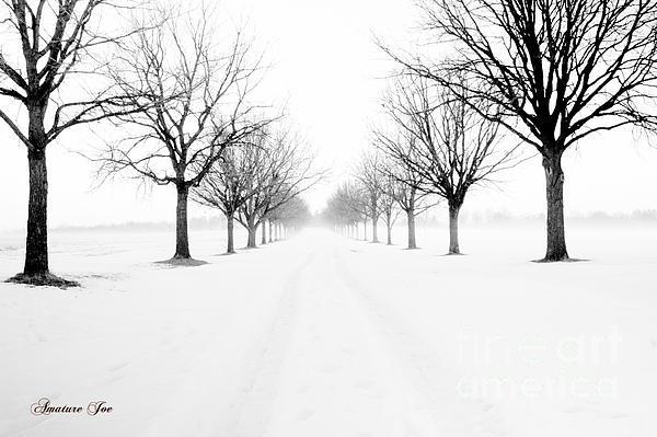 Snowy Path Print by Joe Russell