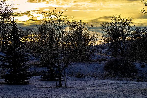 Snowy Sunset Print by Joshua Dwyer