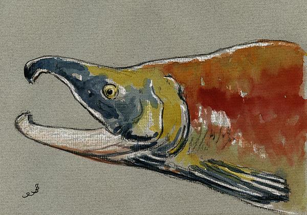Sockeye Salmon Head Study Print by Juan  Bosco