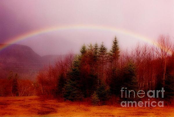 Soft Cape Breton Rainbow Print by John Malone