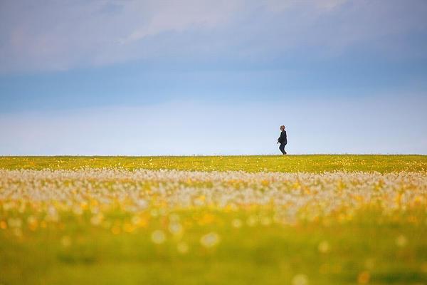 Sometimes We All Walk Alone Print by Karol  Livote