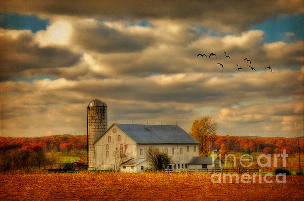 South For The Winter Print by Lois Bryan