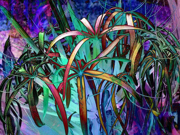 Spider Lilly Print by Athala Carole Bruckner