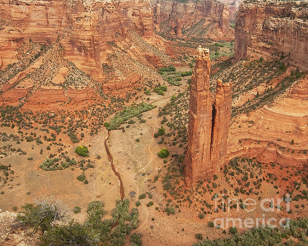 Spider Rock Print by Bob and Nancy Kendrick