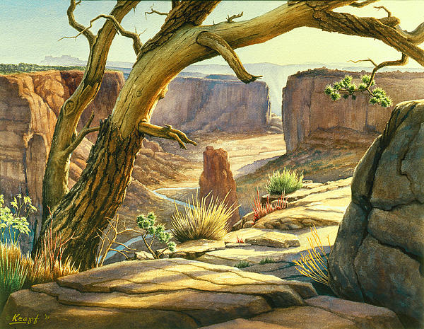 Paul Krapf - Spider Rock Overlook - Canyon DeChelly