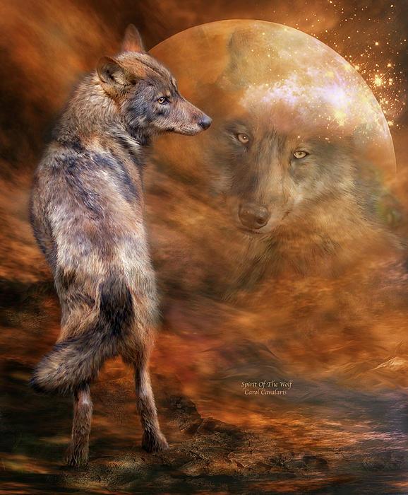 Spirit Of The Wolf Print by Carol Cavalaris