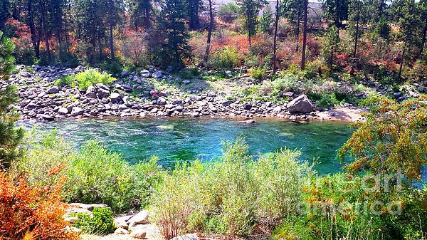 Ana Lusi - Spokane River