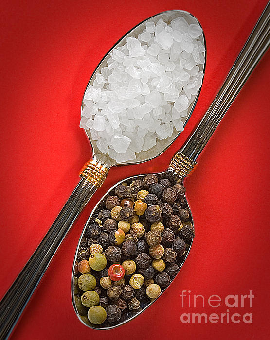 Spoonfuls Of Salt And Pepper Print by Susan Candelario