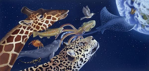 Spots Collage Print by Laura Regan