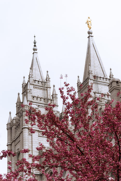 Spring At The Temple Print by Chad Dutson