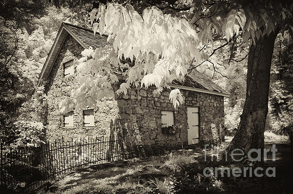 Spring Creek Mill Print by Paul W Faust -  Impressions of Light