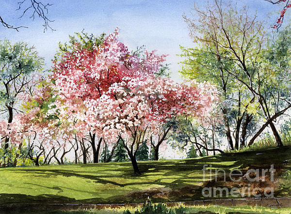 Spring Morning Print by Barbara Jewell