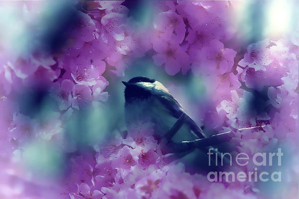 Spring Rhapsody Blossoms Print by Cathy  Beharriell