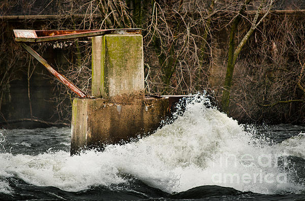 Spring River Rush Print by Shutter Happens Photography